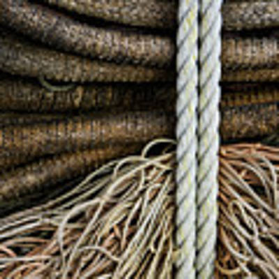 Ropes And Fishing Nets Art Print by Carol Leigh