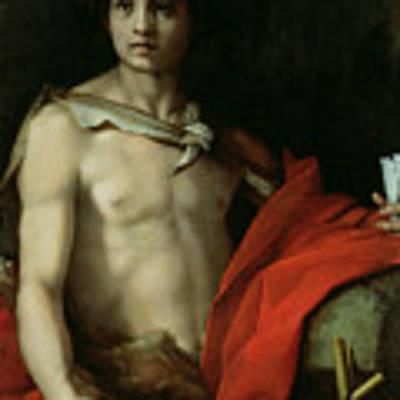 Saint John The Baptist  Art Print by Andrea del Sarto