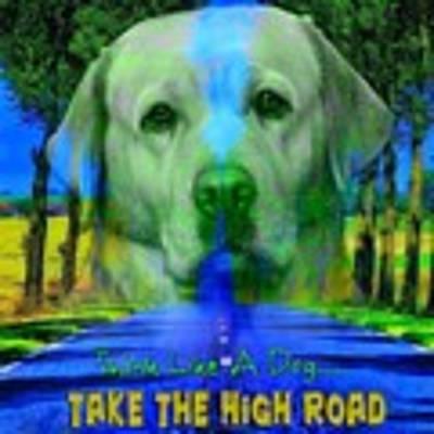 Take The High Road Art Print by Kathy Tarochione
