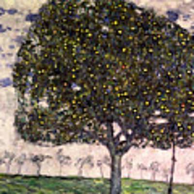 The Apple Tree II Art Print