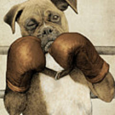 The Boxer Print by Eric Fan