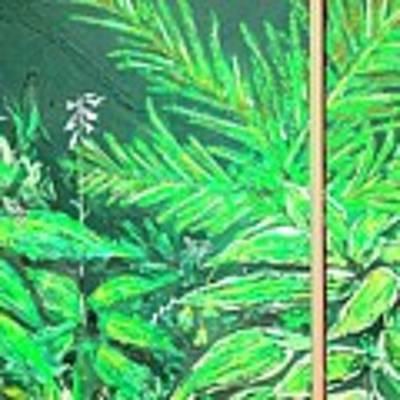 The Green Flower Garden Art Print by Darren Cannell