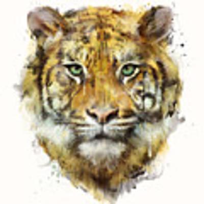 Tiger // Strength Art Print by Amy Hamilton
