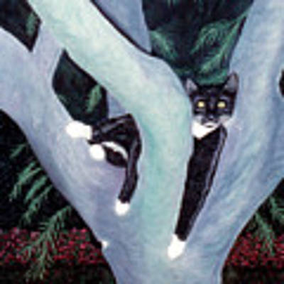 Tuxedo Cat In Mimosa Tree Art Print by Karen Zuk Rosenblatt