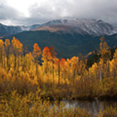 Vivid Autumn Aspen And Mountain Landscape Art Print by Cascade Colors