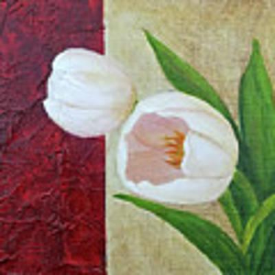 White Tulips Art Print by Phyllis Howard