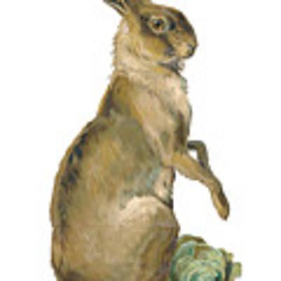 Wild Hare Art Print by ReInVintaged