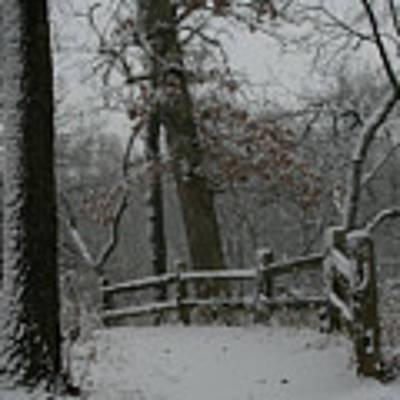 Winter Fence Trail Art Print by Dylan Punke
