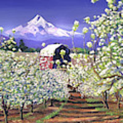 Apple Blossom Time Art Print by David Lloyd Glover