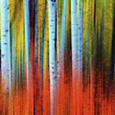 Autumn In Color Art Print by John De Bord