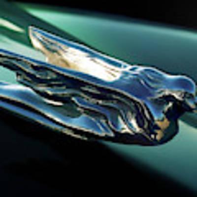 Cadillac Hood Ornament Art Print by Douglas Pittman