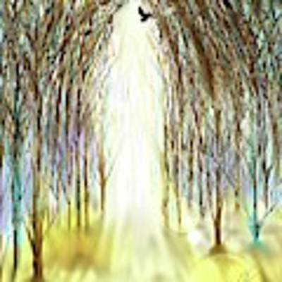 Cathedral Forest Art Print by Darren Cannell