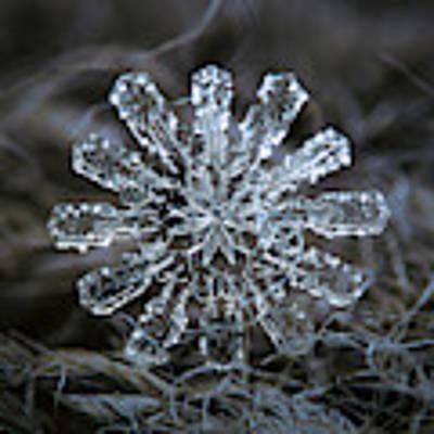 December 18 2015 - Snowflake 3 Art Print by Alexey Kljatov