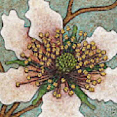 Garden Room 46 Art Print by Amy E Fraser