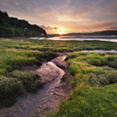 Laugharne Estuary At Sunrise Art Print by Elliott Coleman
