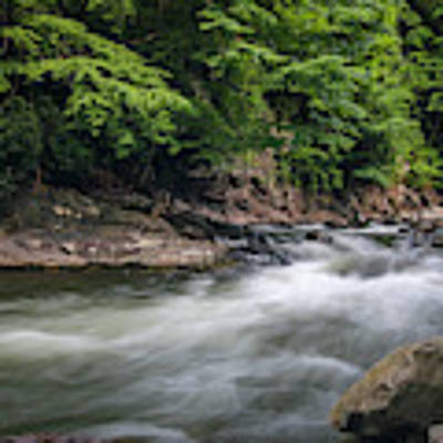 Mountain Stream In Summer #3 Art Print by Tom Claud