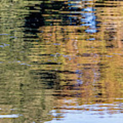 Muted Reflections Art Print by Kate Brown