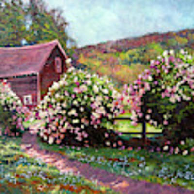 Path To The Old Red Barn Art Print by David Lloyd Glover