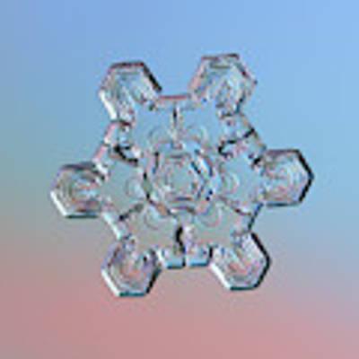 Real Snowflake - 10-jan-2019 - 1 Art Print by Alexey Kljatov