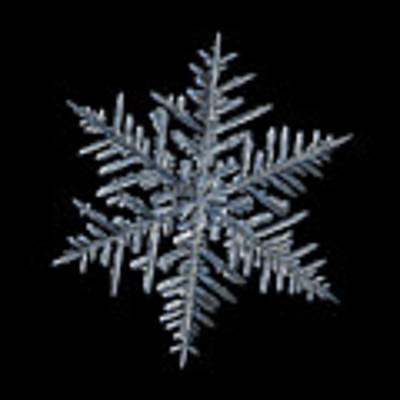 Snowflake 2016-01-21 - 1 Black Art Print by Alexey Kljatov
