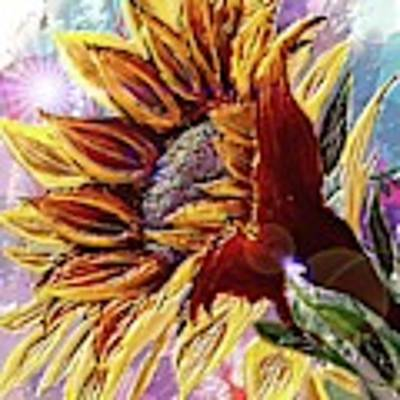 Sunflower In The Sun Art Print by Darren Cannell