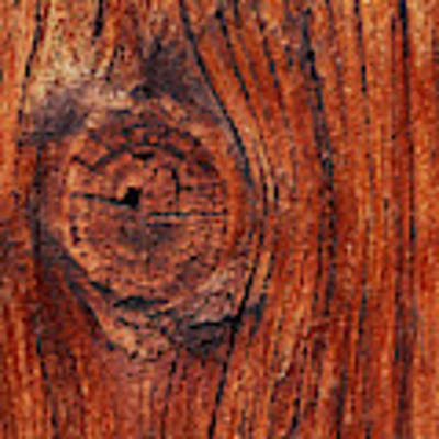 Wood Knot Art Print by ISAW Company