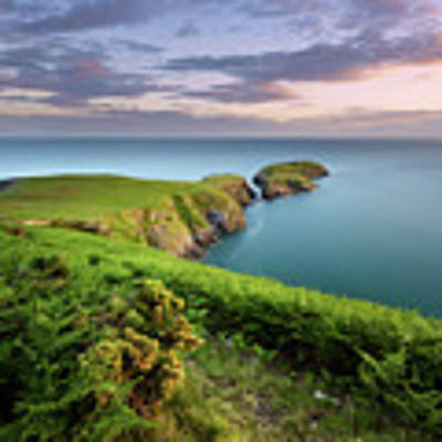 Ynys Lochtyn Summer Sunrise Art Print by Elliott Coleman