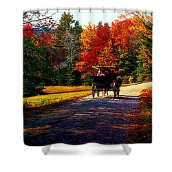 Shower Curtain featuring the photograph  Acadia National Park Carriage Trail Fall  by Tom Jelen