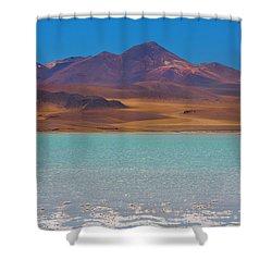Atacama Salt Lake Shower Curtain