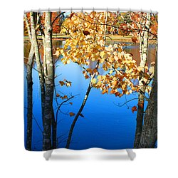 Autumn Trees On The Lake Shower Curtain by Lesa Fine