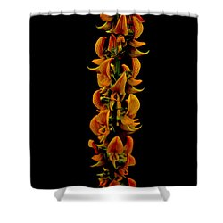 Bunch Of Flowers Shower Curtain by Michelle Meenawong