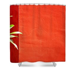 Challenging Circumstances Shower Curtain