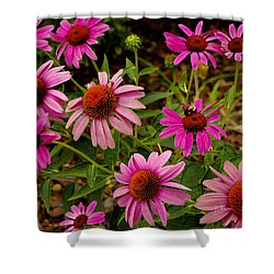 Shower Curtain featuring the photograph  Coneflower Gang  by James C Thomas