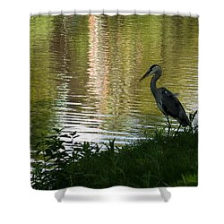 Shower Curtain featuring the photograph Contemplating Impressionist Paintings by Georgia Mizuleva