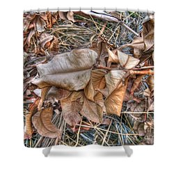Dead Leaves Shower Curtain by Michelle Meenawong
