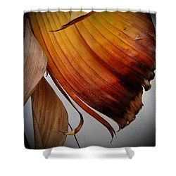 Dried Leaves Shower Curtain by Michelle Meenawong
