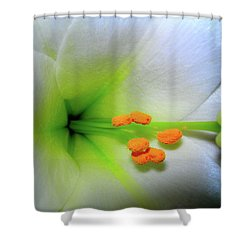 Easter A New Beginning  Shower Curtain by Randy Rosenberger