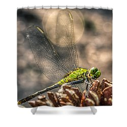 Shower Curtain featuring the photograph  Erythemis Simplicicollis by Rob Sellers
