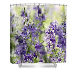 Fields Of Lavender  Shower Curtain by Saija  Lehtonen