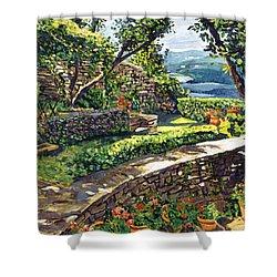 Garden Stairway Shower Curtain by David Lloyd Glover