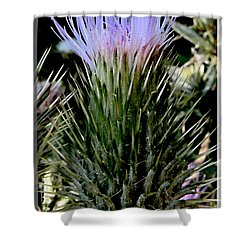 Glowing Purple Thisle Flower Shower Curtain