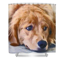 Golden Retriever Dog Shower Curtain