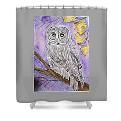 Shower Curtain featuring the painting  Grey Owl by Belinda Lawson