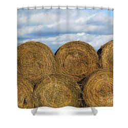 Hay  Shower Curtain by France Laliberte