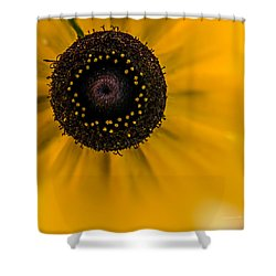 Looking At You Kid Shower Curtain