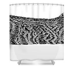 Skippy The Manx Cat Sleeping Shower Curtain