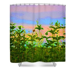 Meadow Magic Shower Curtain by First Star Art