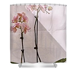 Shower Curtain featuring the photograph  Orchids In The Window by Ira Shander