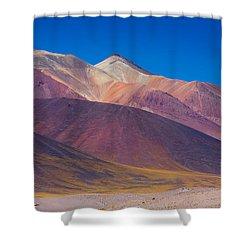Painted Atacama Shower Curtain