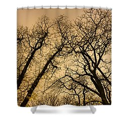 Quarrel Shower Curtain
